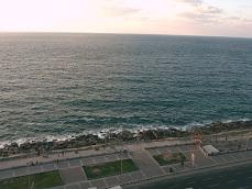 Cornish in Alexandria